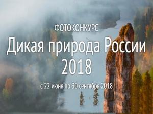Фотоконкурс «Дикая природа России – 2018»