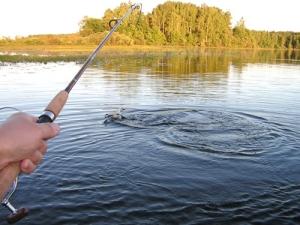 Фотоконкурс среди любителей рыбалки «Ловись, рыбка»