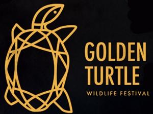 Творческие конкурсы Международного фестиваля «Золотая черепаха»