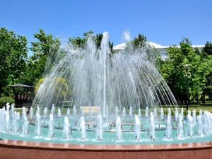 Книжная выставка «Шумят задумчиво фонтаны»