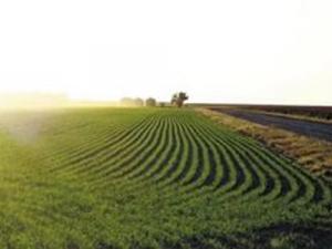 Выставка «Почвозащитные технологии в земледелии»