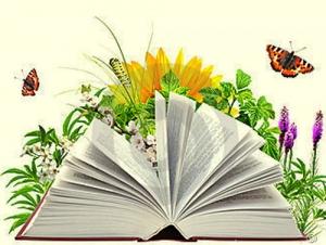 Х Конкурс сочинений «Слово олюбимой книге»