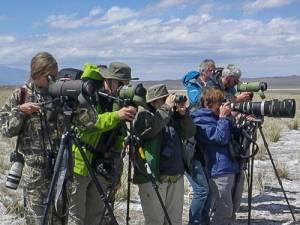 Фотоконкурс «Мир глазами биолога»