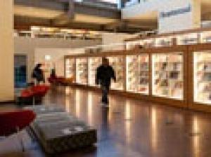 Мониторинг внедрения Модельного стандарта деятельности общедоступной библиотеки вУР