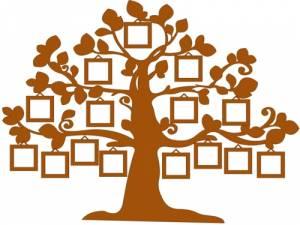 Практико-ориентированный курс погенеалогии «Древо родословия»