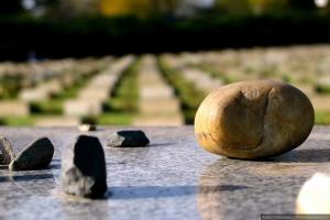 XVII ежегодный международный конкурс «Память о Холокосте – путь к толерантности»