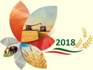 Ежегодная агропромышленная выставка «День поля вТатарстане– 2018»