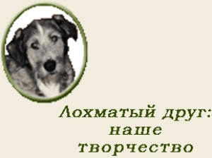 IV Международный литературный конкурс «Лохматый друг»