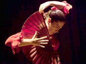 Выставка «Испанский народный танец»