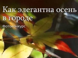 Всероссийский конкурс фотографии «Как элегантна осень в городе»